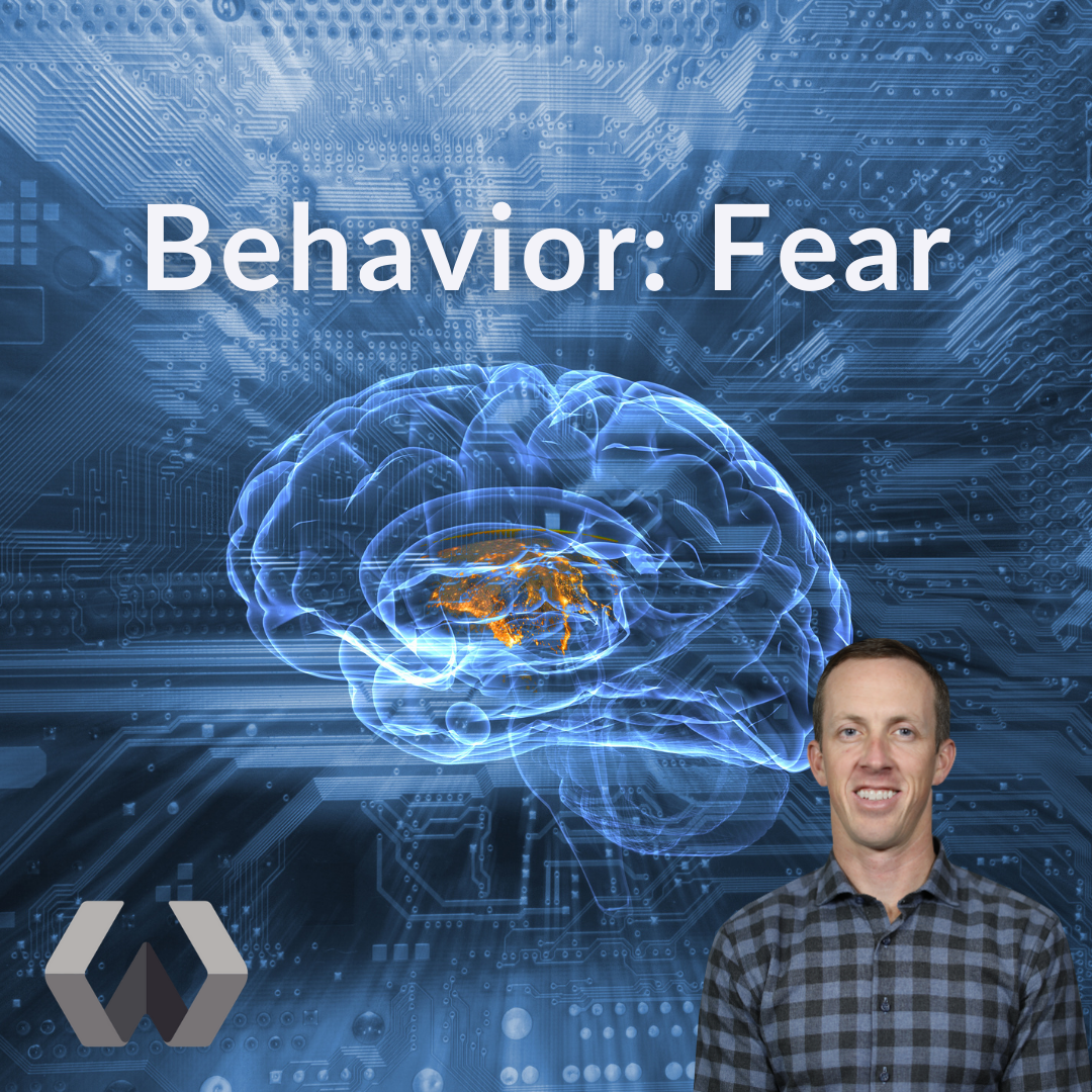 Behavior: Fear
